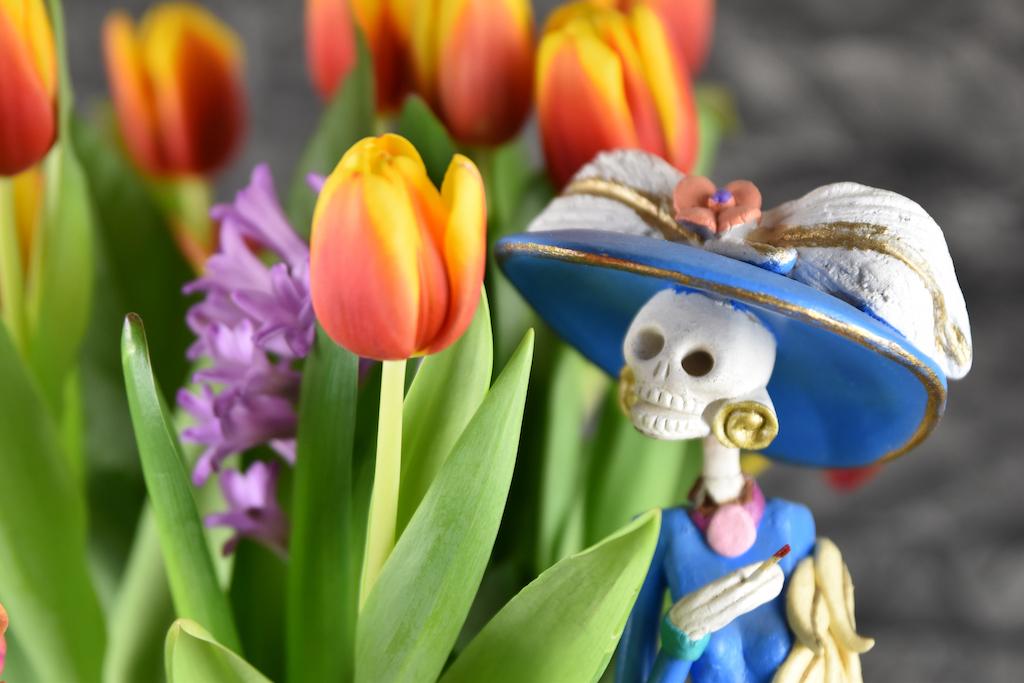 Catrina mit Totenkopf neben Tulpen