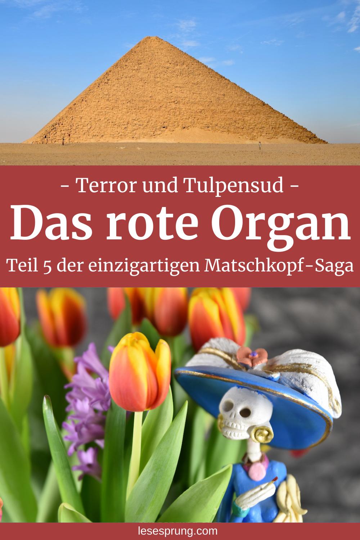 Pin rote Pyramide und Catrina mit Tulpen